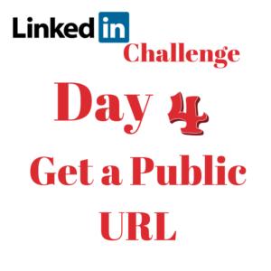 LinkedIn Challenge Public URL